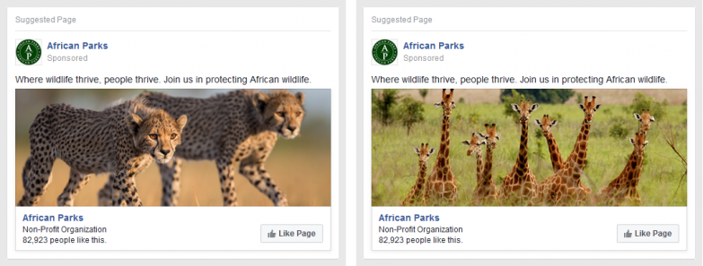 African Parks FB